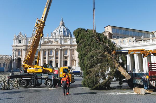 Vatican-Crhistmas-Tree