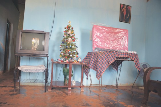 A typical Cuban Christmas tree sits in the living room of home in La Salud.