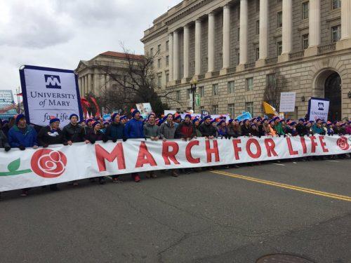 melissa-march-banner