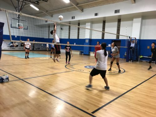 Vianney Volleyball